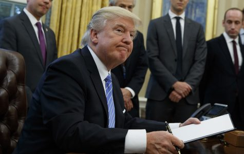 Trump travel ban effect on SLU