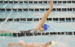 Swimming Has Strong Showing at Home