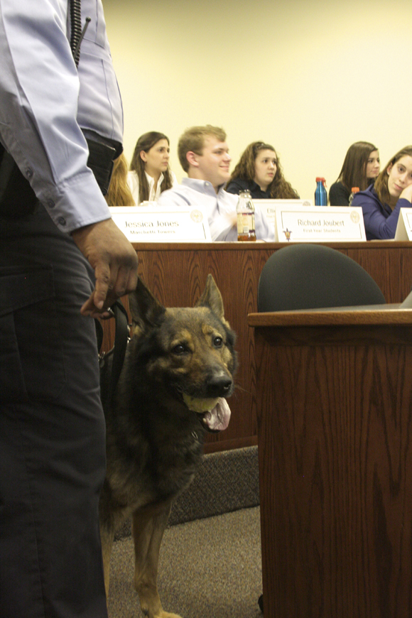 The St. Louis Police Department's detection dog, Chief, attended the SGA meeting on Wednesday, Feb. 29 during resolution discussions of episodic drug search rounds through residence halls. Jennifer Wang / Photo Editor
