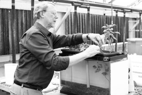 Greenhouse: Stump sees the work done in the greenhouses as a potential catalyst for future innovations in sustainable living. John Schuler / Editor-in-Chief
